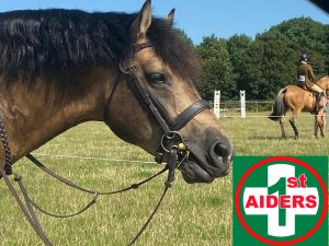 equestrian event first aid Manchester north wales